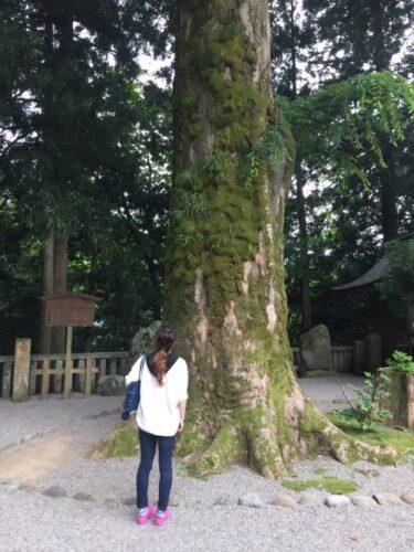 白山(しらやま)ひめ神社(石川県白山市)